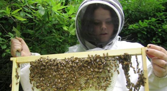 beekeeper girl