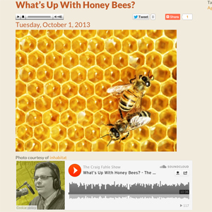 wdet-bee-interview